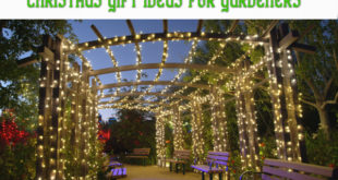 christmas-gift-ideas-for-gardeners