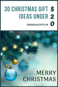 30 Christmas gift ideas under $20