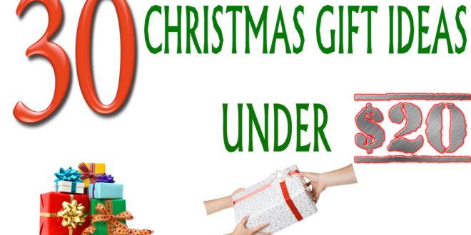 Staff christmas gift ideas under $20