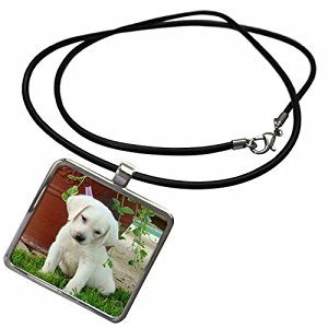 necklace with puppy pendant