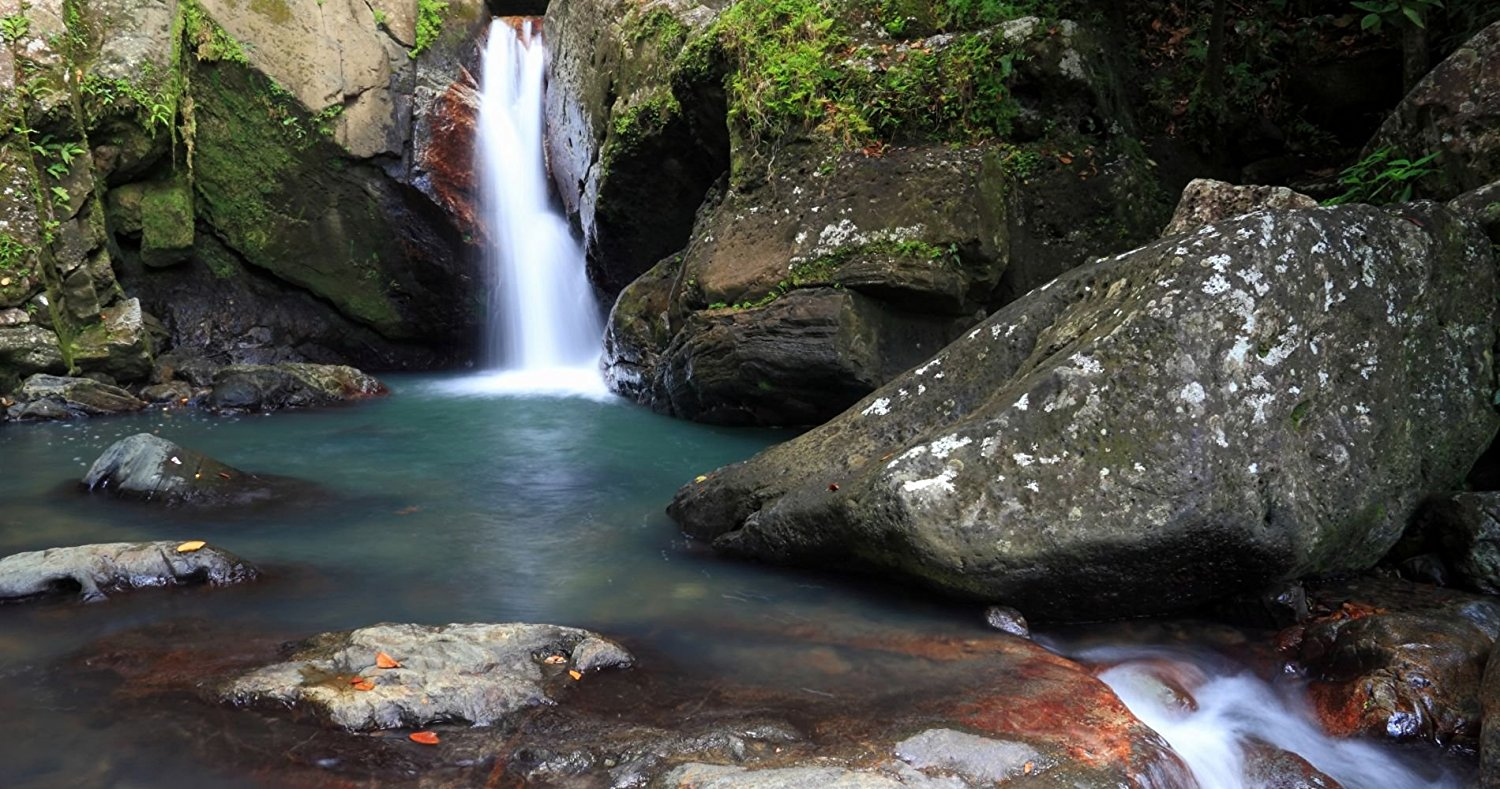 el-yunque-rainforest-experience-in-puerto-rico