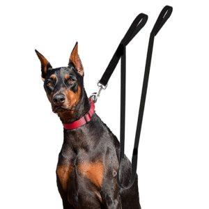 extra-long-dog-leash