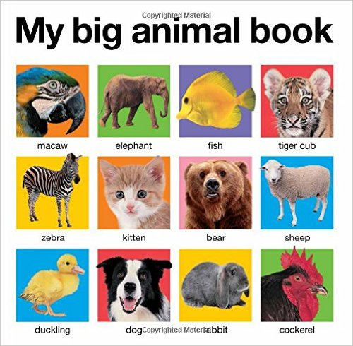my-big-animal-book