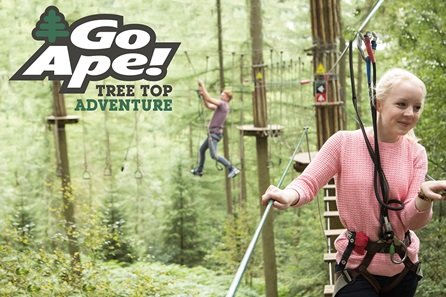 tree-top-adventure-for-two-with-go-ape