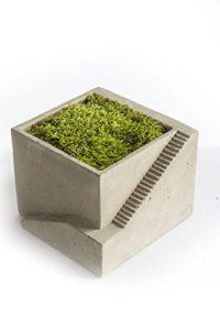 vintage-cement-architectural-planter