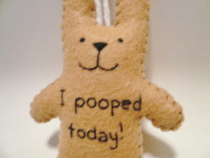 I pooped today gift