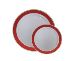 Disposable Christmas dinner plates