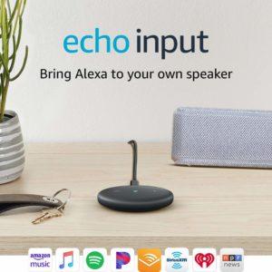 Echo Input - insomniac gift ideas